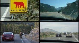 AutoRoute: Driving the USA