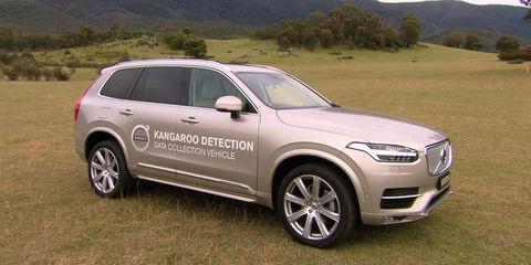 Volvo developing kangaroo detection system in Australia