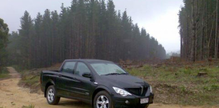 ssangyong-in-forest.jpg