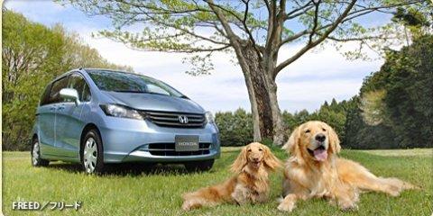 Honda targets dog-lovers