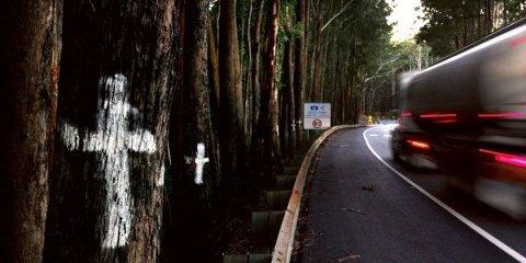 Victoria tops holiday road tolls