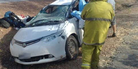 Indigenous vehicle death toll three times higher: study
