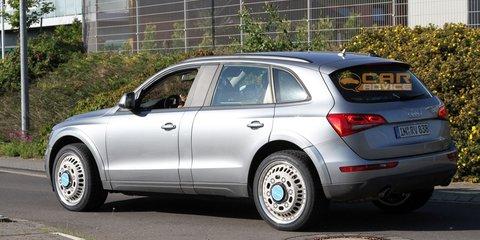 Audi Q6 mule spy photos