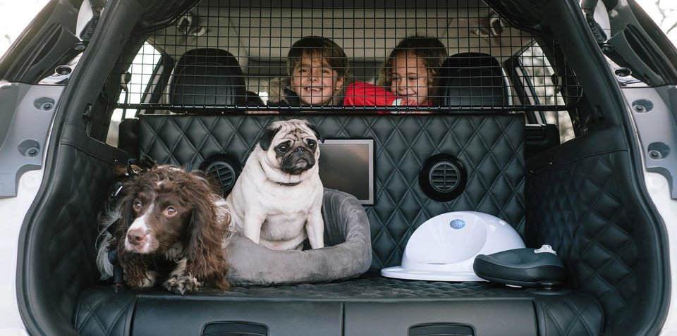 Nissan X Trail For Dogs >> Nissan X-Trail 4Dogs concept revealed