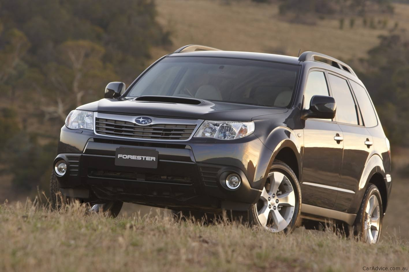 Subaru Forester vs Toyota RAV4 vs Nissan X-Trail - Photos