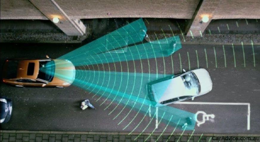 Volvo Developing Animal Detection Amp Crash Avoidance System