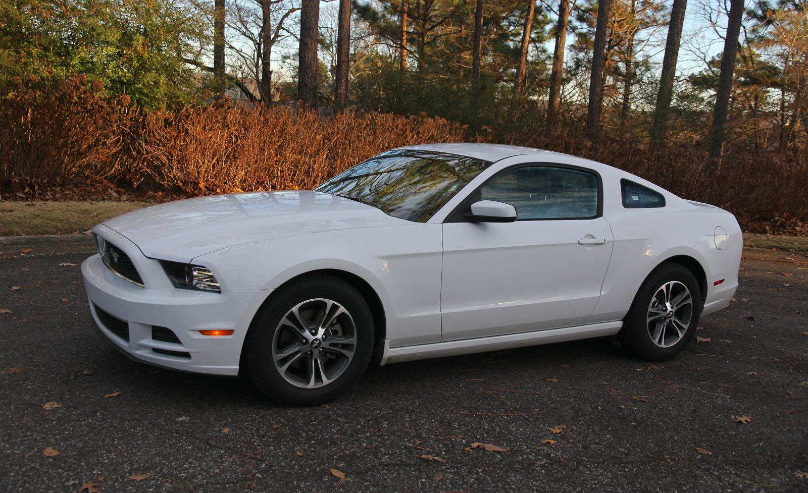 2014 Ford Mustang Review V6 Premium Photos Caradvice