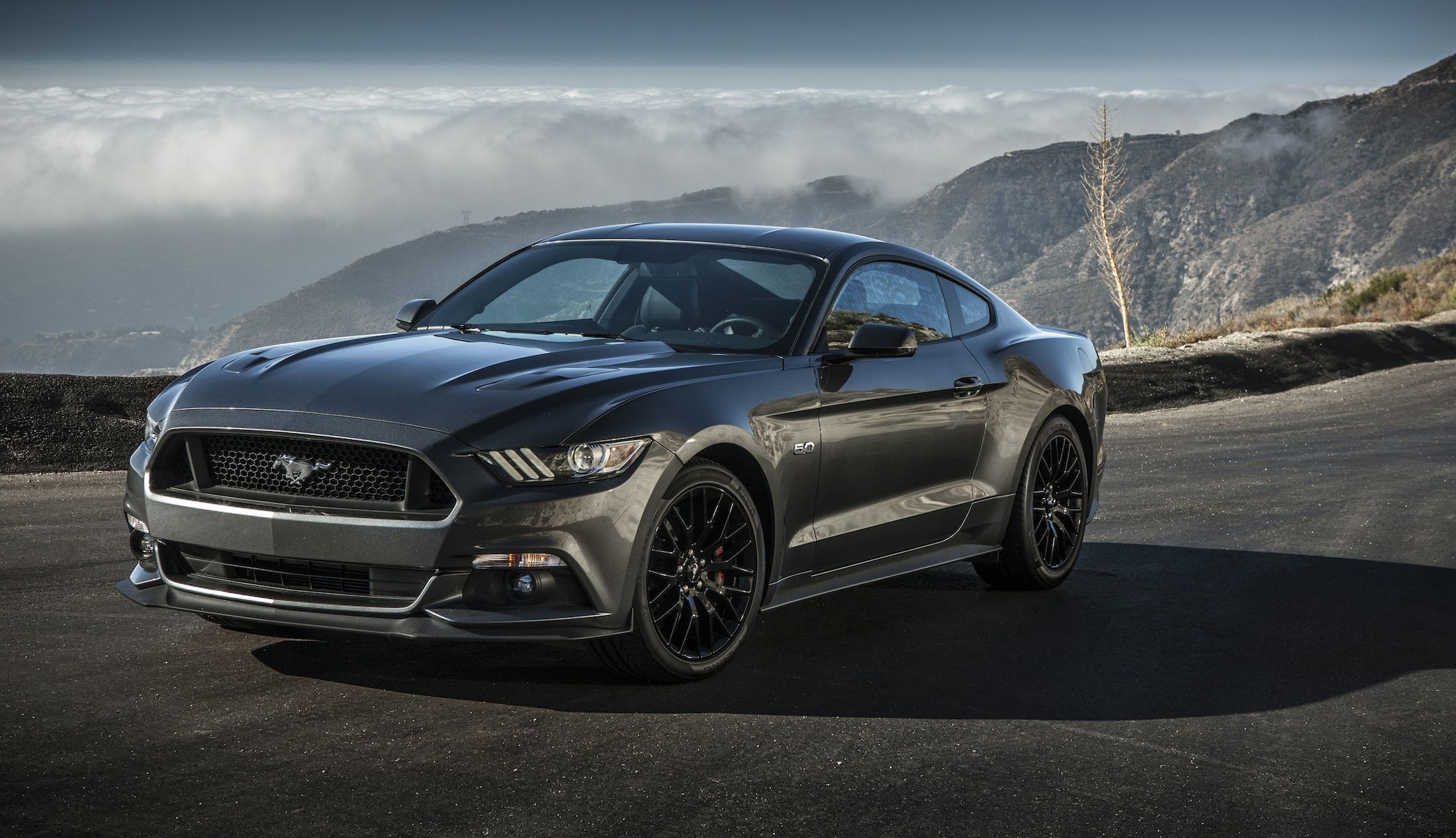 2015 Ford Mustang Review - photos | CarAdvice Mustang
