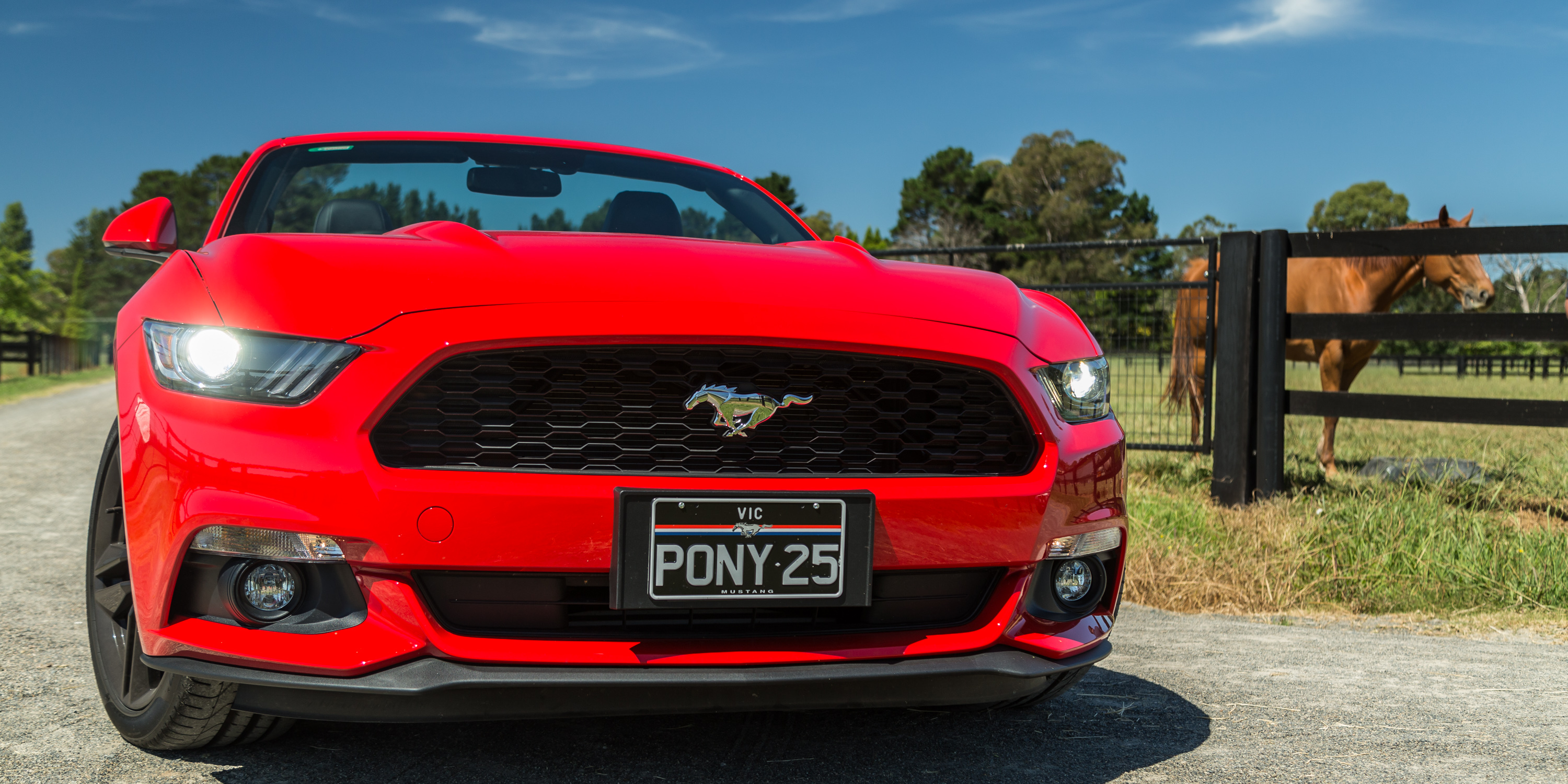 ford mustang ecoboost convertible review  caradvice
