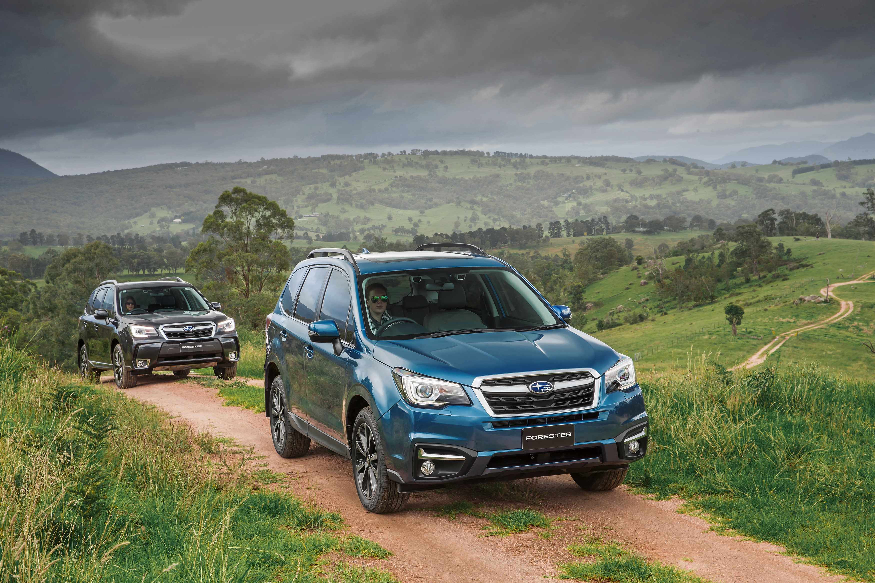 2016 Subaru Forester Review - photos | CarAdvice